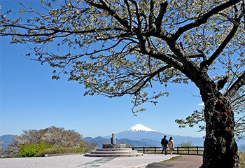 日本平 吟望台 写真
